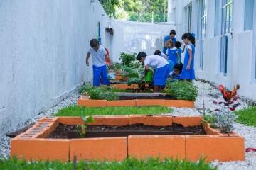 escuela-en-cancun-primaria-y-kinder-victoria-school-10