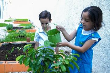 escuela-en-cancun-primaria-y-kinder-victoria-school-9